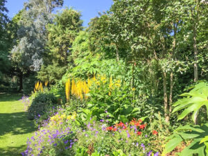 Southern Hemisphere garden