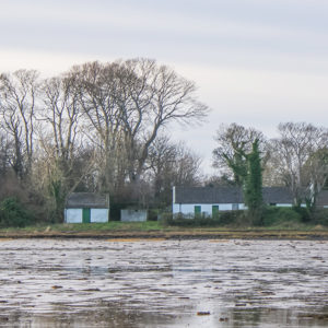 Island Cottage on Strangford Lough
